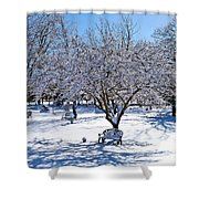 Wintry Day At The Park Shower Curtain