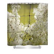 Wire Weed 14432 Shower Curtain