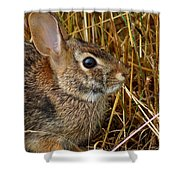 Wired For Action Shower Curtain