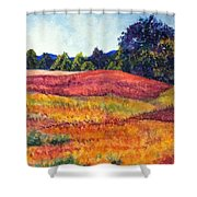 Wisconsin Summer Shower Curtain
