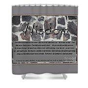 Wisdom In Stone Inspirational Shower Curtain