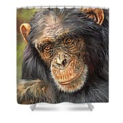 Wise Eyes Shower Curtain