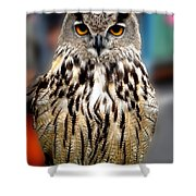 Wise Forest Mountain Owl Spain Shower Curtain
