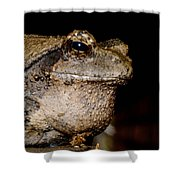 Wise Old Frog Shower Curtain
