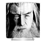 Wise Wizard Shower Curtain by Kayleigh Semeniuk