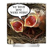 Wish You Were Here Greeting Card Shower Curtain