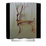 Wishbones Shower Curtain