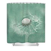 Wishful Shower Curtain by Kim Hojnacki