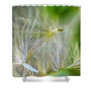 Wispy Journey Shower Curtain