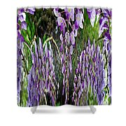 Wisteria Abstract Shower Curtain