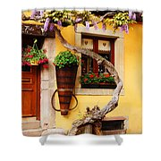 Wisteria And Yellow Wall In Alsace France Shower Curtain
