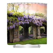 Wisteria In May Shower Curtain