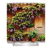 Wisteria On Home In Zellenberg 4 Shower Curtain