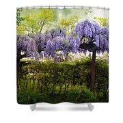 Wisteria Trellis Shower Curtain by Jessica Jenney