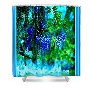 Wisterias - 2 Shower Curtain