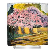 Wisterias Santa Fe New Mexico Shower Curtain