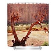 Witch Way Did They Go? Shower Curtain