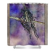 Witchride Shower Curtain