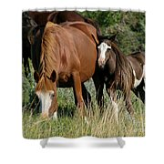 With Love Shower Curtain by Sabrina L Ryan