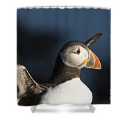 With Outstretched Wings Shower Curtain