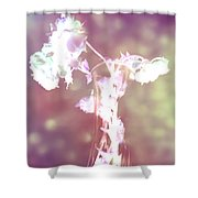Withering Away - Magenta Sparkle Shower Curtain