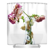 Withering Away Shower Curtain