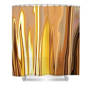 Within 2 Shower Curtain