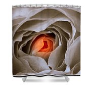 Within A Rose Shower Curtain
