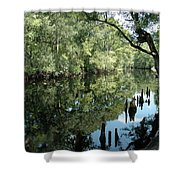 Withlacoochee River Reflections Shower Curtain