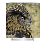 Wize Owl 2 Shower Curtain