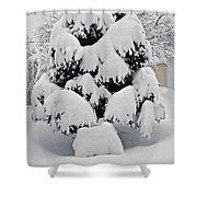 Wnter Tree 5 Shower Curtain
