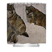 Wolf 2 Shower Curtain