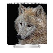 Wolf Bride Shower Curtain