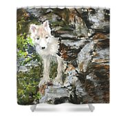 Wolf Pup Shower Curtain