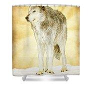 Wolf Shine Shower Curtain
