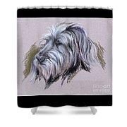 Wolfhound Portrait Shower Curtain
