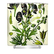 Wolfsbane Shower Curtain by Georgia Fowler