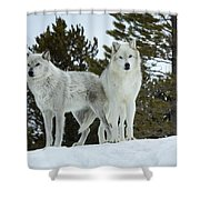 Wolves - Partners Shower Curtain