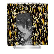 Woman In Flames Shower Curtain