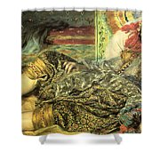 Woman Of Algiers Shower Curtain