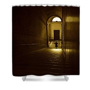 Woman On Stairs Shower Curtain by Chevy Fleet