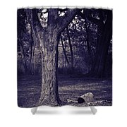 Woman Under A Tree Shower Curtain