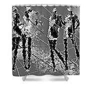 Women 509-11-13 Marucii Shower Curtain