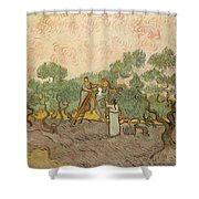Women Picking Olives Shower Curtain