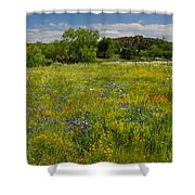 Wonder-filled Meadows Shower Curtain
