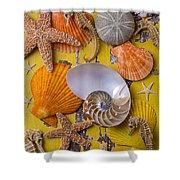 Wonderful Sea Life Shower Curtain