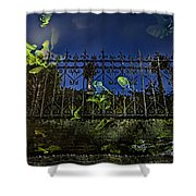 Wonderland-1 Shower Curtain