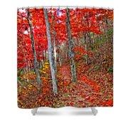 Wonders Of Autumn  Shower Curtain