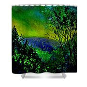 Wood 957 Shower Curtain