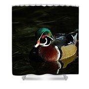 Wood Duck Drip Shower Curtain
